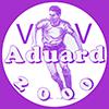 VV Aduard 2000