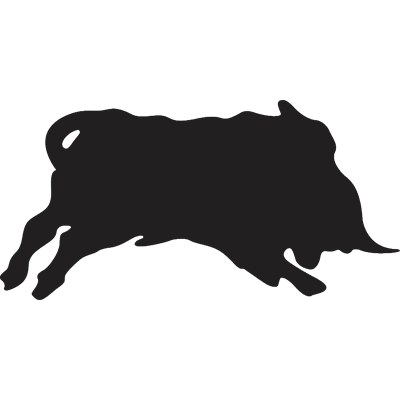 SVVV Taurus