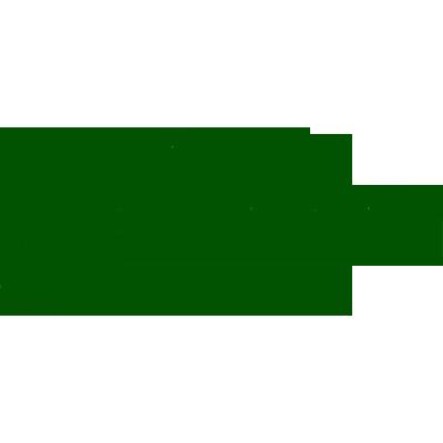 VV Drienerlo